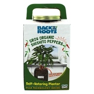 Self-Watering Organic Shishito Peppers Planter by Back to the Roots