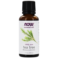 100% Pure Essential Oil Tea Tree - 1 fl. oz. by NOW Foods